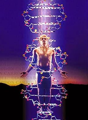 Reconectar os Doze Filamentos do seu DNA